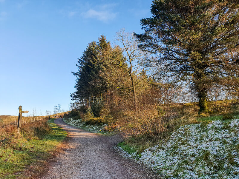 Shutlingsloe walk - following track to summit