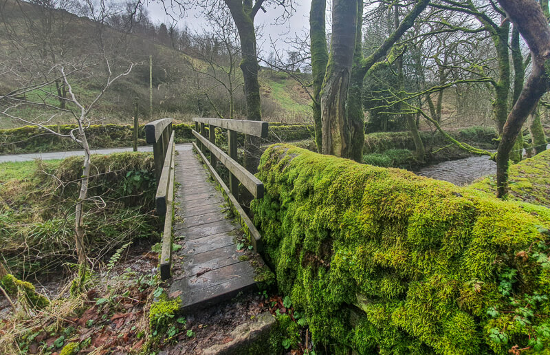 Small wooden bridge at the start of the walk