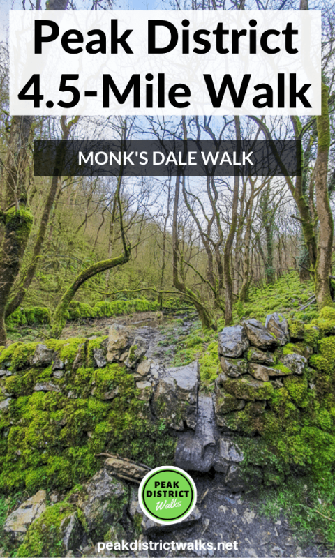 Monk's Dale short walk