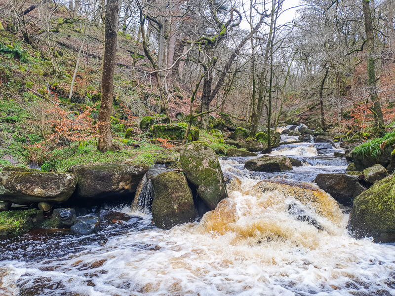 Padley Gorge in Peak District