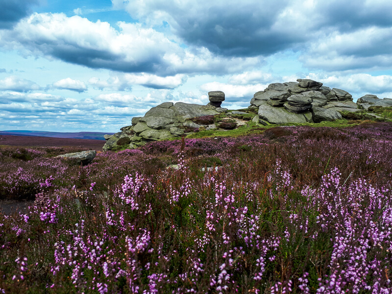 Derwent Edge in Peak District