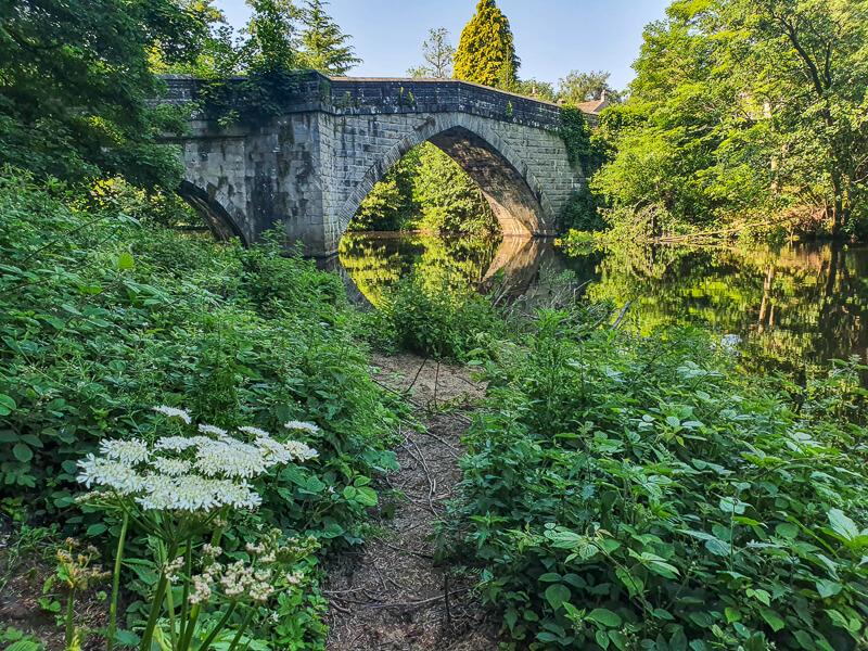 Froggatt Bridge over river green plants