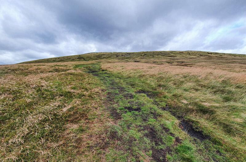 Tracks on hill