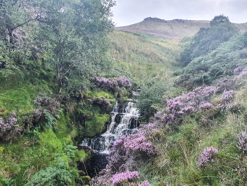 Waterfall and heather