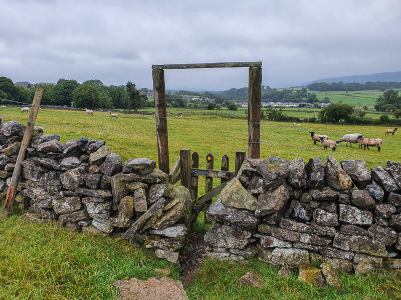 Gate through field