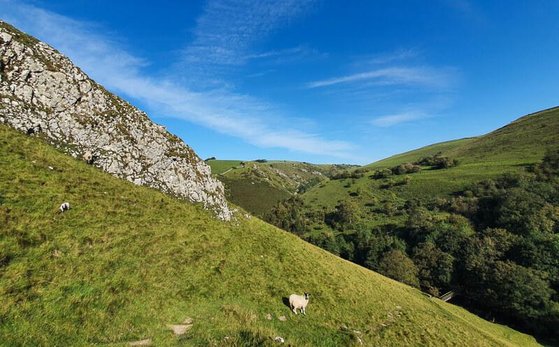 Limestone rocks and grassy bank