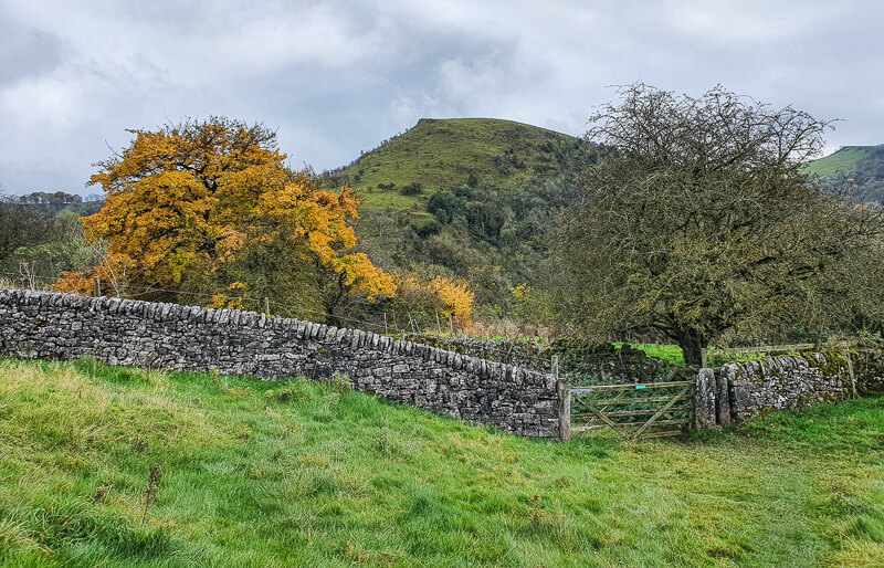 Stone wall, autumn tree and hills
