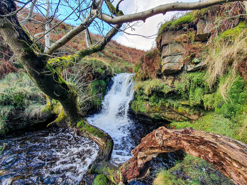 Crowden Brook waterfall and branches