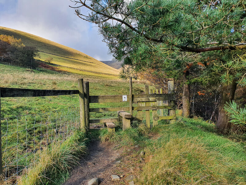 Stile and wooden fence