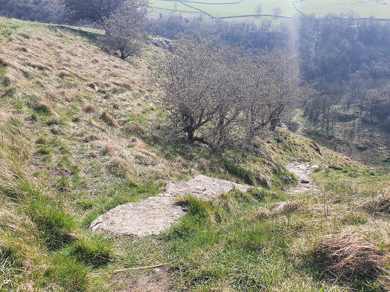 Footpath heading downhill