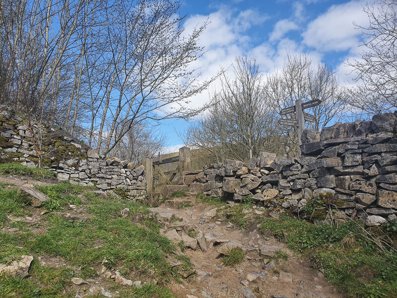 Path and stone wall