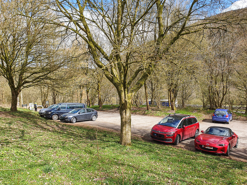 car park with trees