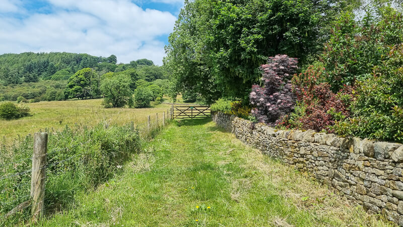 Grassy path and wooden gate