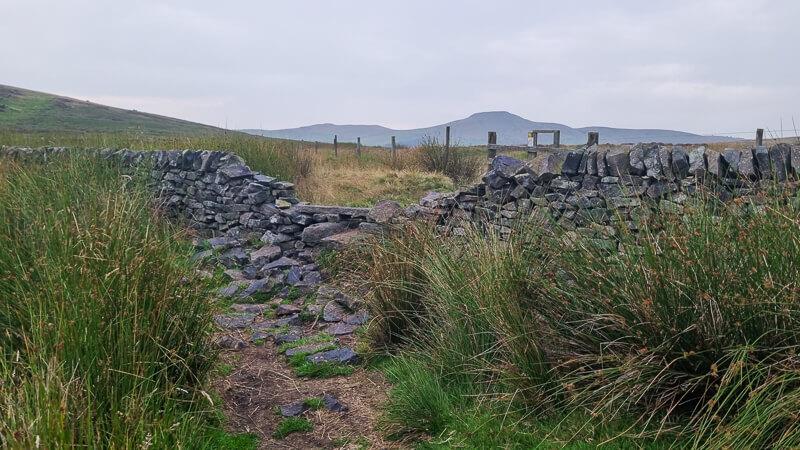 Wall with Shutlingsloe in distance